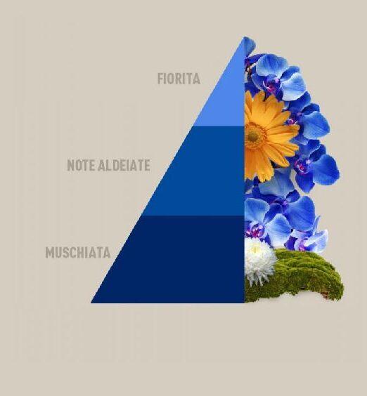 essenza blue horomia