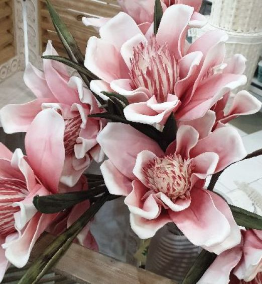 Fiore magnolia misto per casa