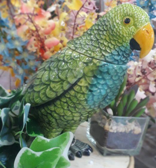 contenitore pappagallo